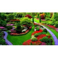 Садово-парковое благоустройство