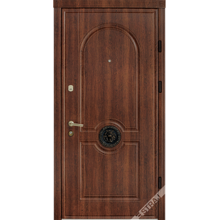 Дверь входная металлическая 54 каштан