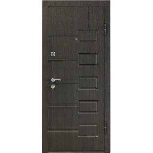 Дверь входная металлическая ПБ-21