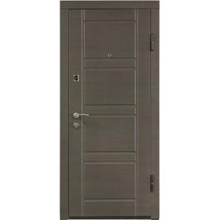 Дверь входная металлическая ПО-29 серый горизонт статика